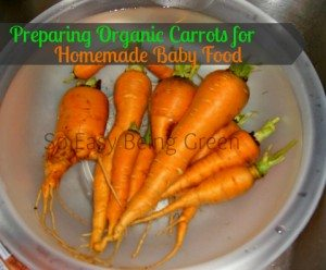 As Organic As You Can Get – Preparing Organic Carrots