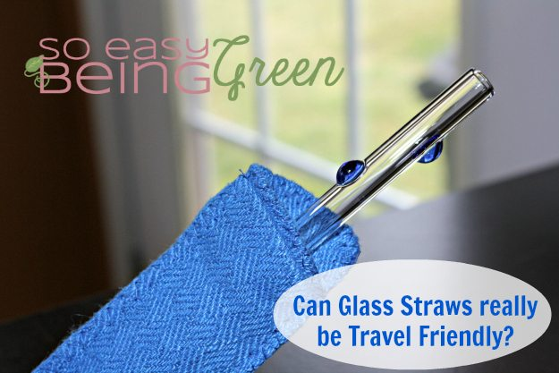 glass straws can be taken with you for an eco friendly straw