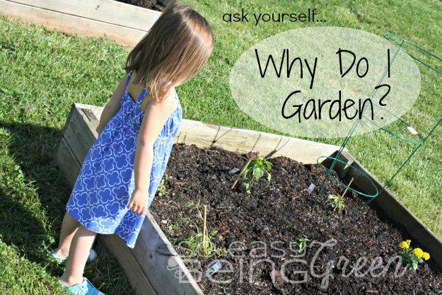 Why Do I Organic Garden?