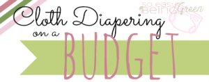 Cloth Diapering on a Budget: Series Recap and Accessories on a Budget