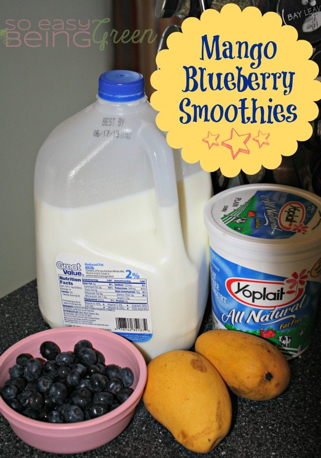 Mango Blueberry Smoothies Ingredients