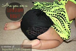 Pocket Cloth Diapers are Still an Option When Cloth Diapering on a Budget