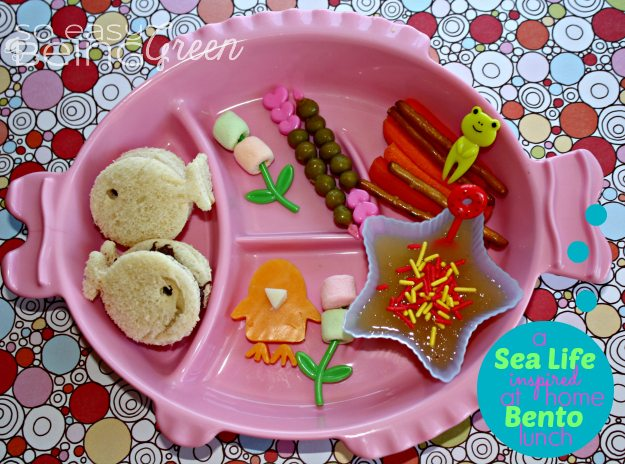 Toddler Bento Lunch Eco Friendly Tableware