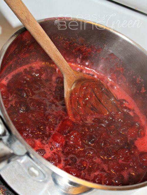 cranberrysaucediy