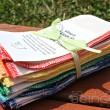 Rainbow Wipes
