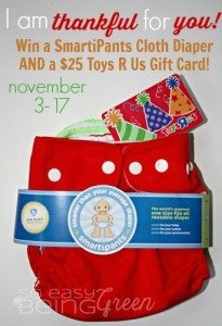 SmartiPants OS Cloth Diaper & $25 Toys R Us Gift Card Giveaway #Thankful4You