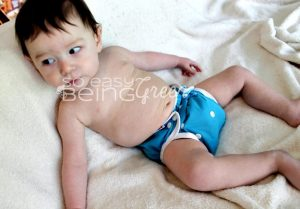 A Look at Bummis Cloth Diapers: Flannel Fitted, Simply Lite Diaper Cover, and Potty Pant