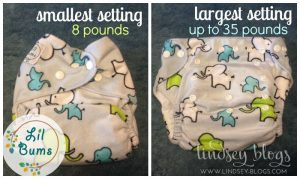 Lil Bums One Size Cloth Diapers