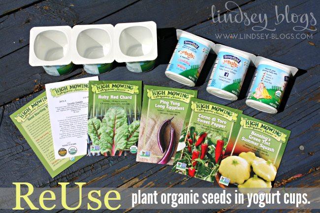 Plant seeds in yogurt cups