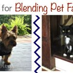 Blending Pet Families