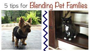 5 Tips for Blending Pet Families