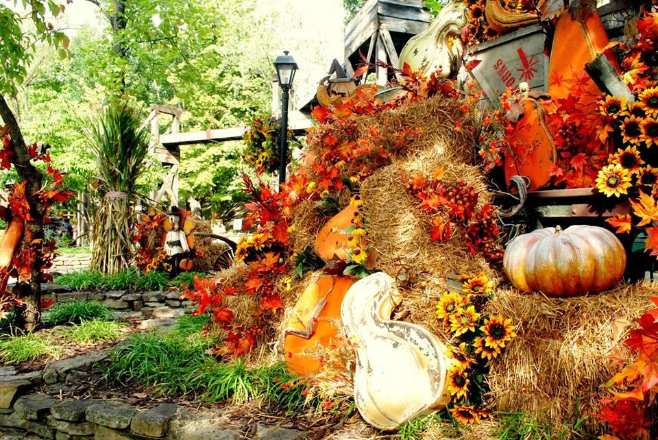 Fall at Dollywood