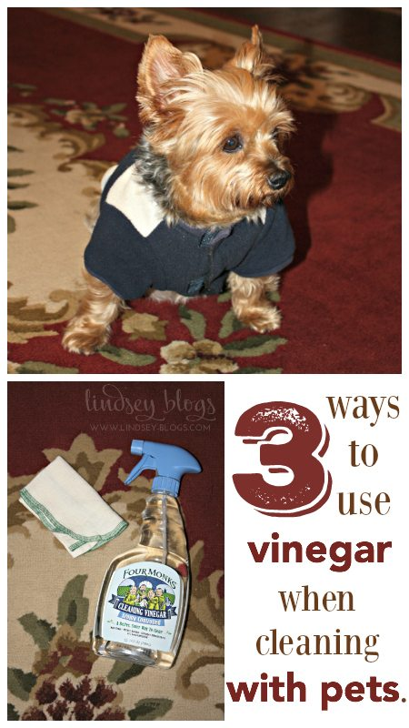 3 Ways to Use Vinegar with Pets