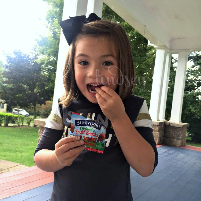 Stonyfield Organic Fruit Snacks Kid