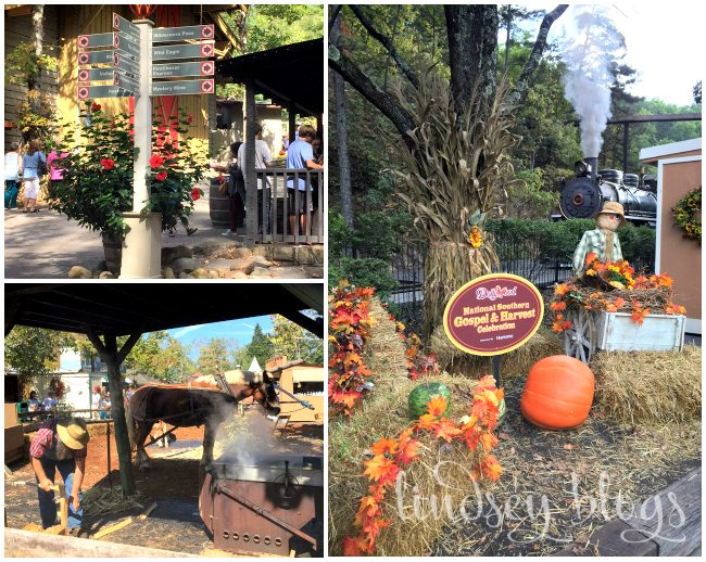 Dollywood Collage