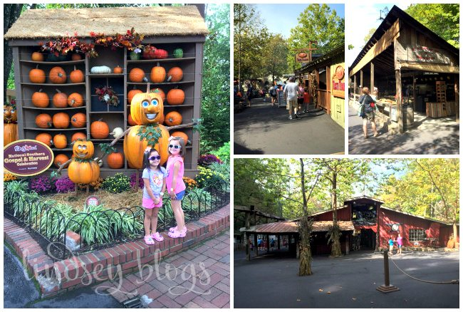 Dollywood Harvest Collage