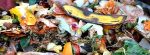 How to Reuse Food Scraps to Add Compost in Soil for Improved Growth