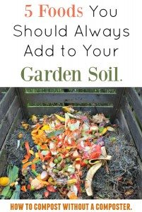 Compost in Soil without Composter
