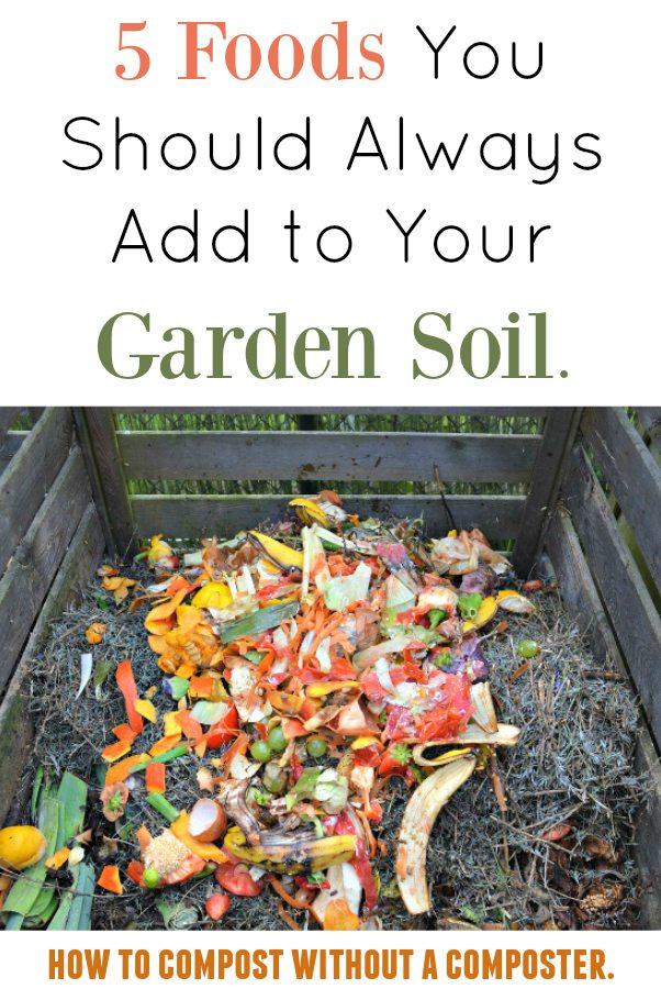 Food Scraps in Garden Soil