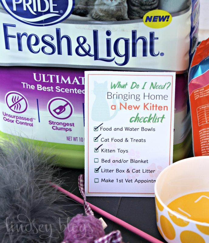 Bringing Home Kitten Checklist Litter