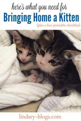 Bringing-Home-a-Kitten-Checklist-Pin-267x400