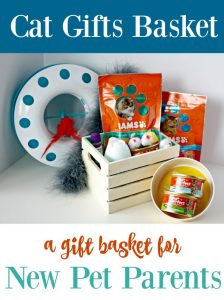 Cat Gifts Basket for New Pet Owners