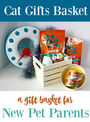 Cat-Gifts-Basket-298x400
