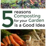 Reasons Compost in Garden is Good