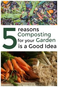 5 Reasons Composting for Your Garden is a Good Idea