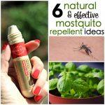 Natural Mosquito Repellent Ideas