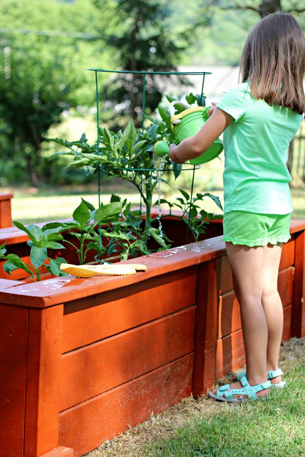 Green Toys Watering Garden