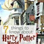 7 Things to Know About Harry Potter World