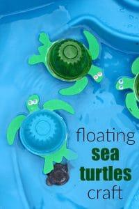 10 Fun Sea Turtle Facts for Kids + DIY Sea Turtle Craft