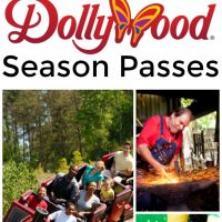 Everything You Need to Know About Dollywood Season Passes