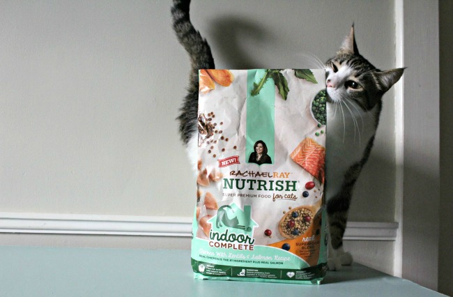 Cat beside Cat Food Bag