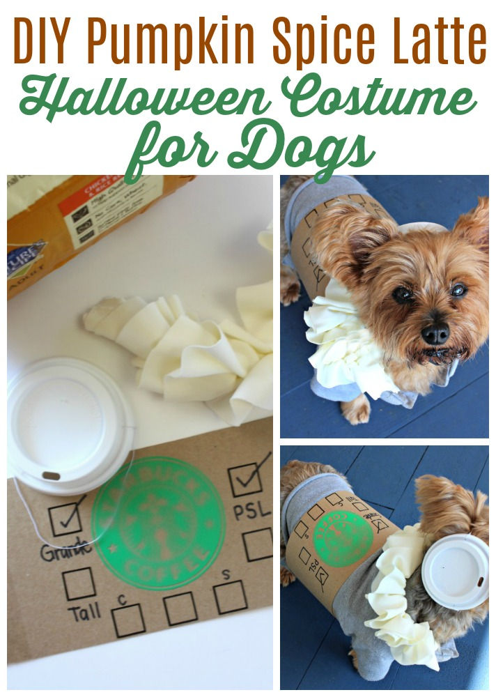 15b77ddabef Looking for adorable DIY Dog Costumes for Halloween  This easy costume  comes together in minutes and pays homage to everyone s favorite fall drink!