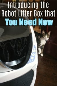 Introducing the Robot Litter Box that You Need Now