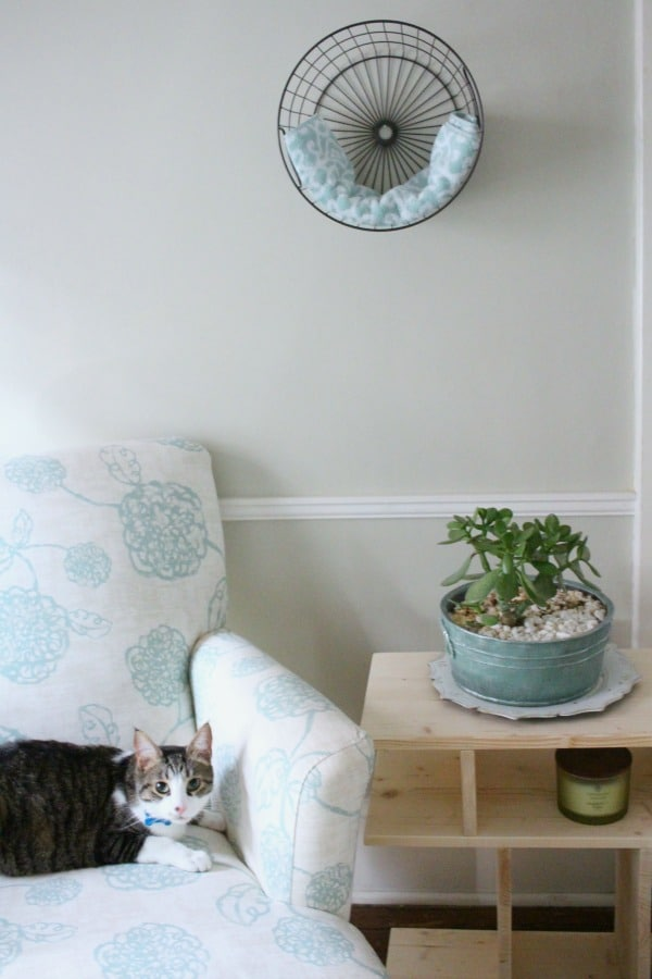 Simple Diy Cat Bed To Match Any Home Decor