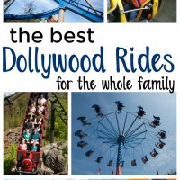 Dollywood Rides - The Best in the Park and Who Can Ride