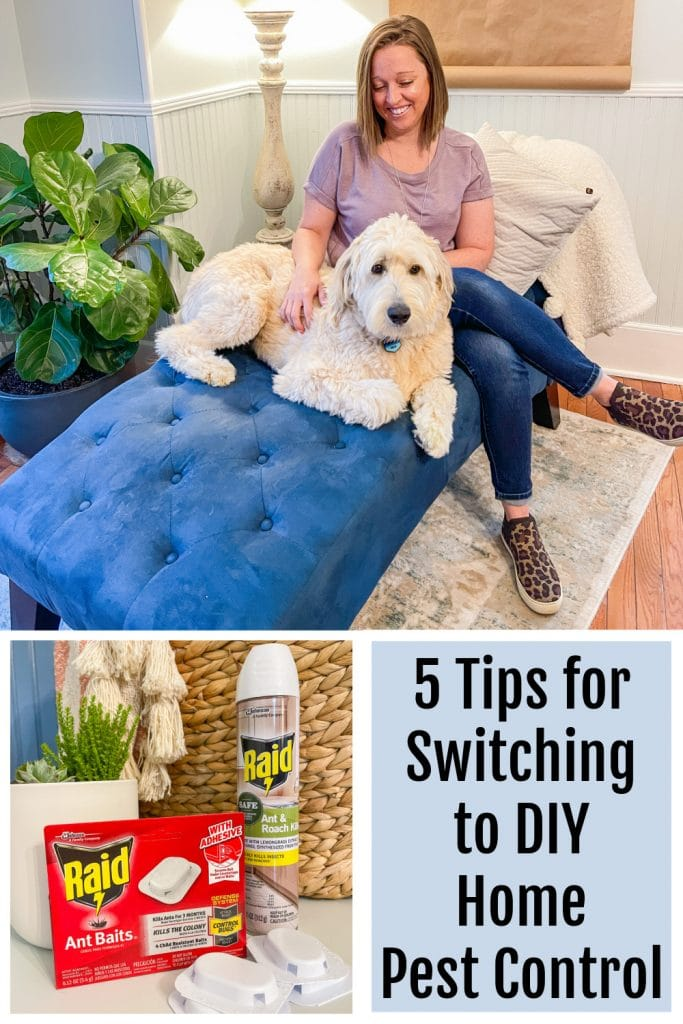 5 Tips for Switching to DIY Home Pest Control